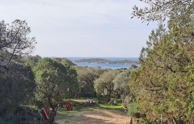 Corse du Sud, camping à la vente