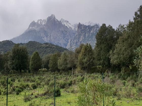 Haute-Corse camping à vendre